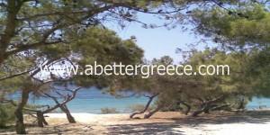 Aegina beaches Greece